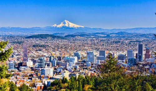 Chiropractic Practice South of Portland Oregon Seeks Associate to Owner Opportunity